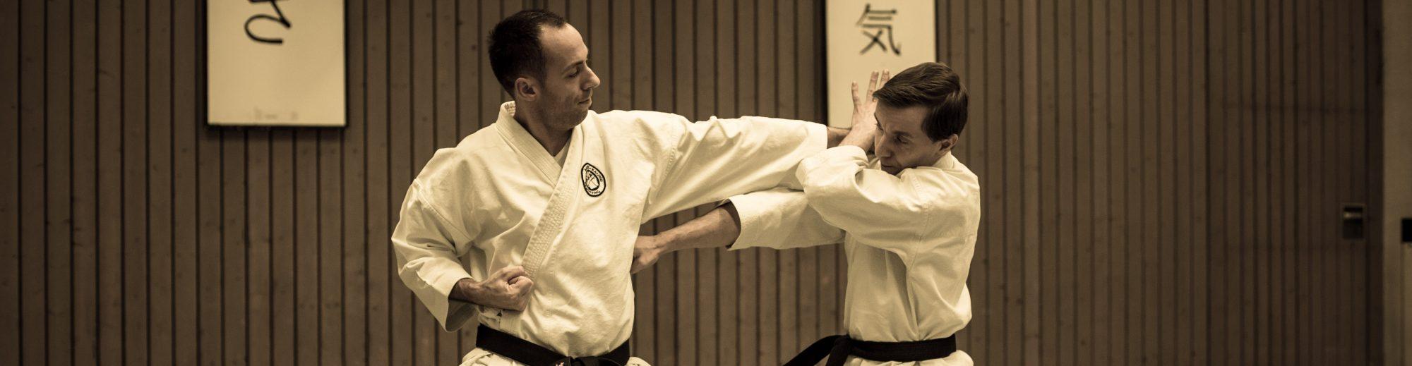 Katsu-Kaishu  Karate Dojo Neuötting e.V.
